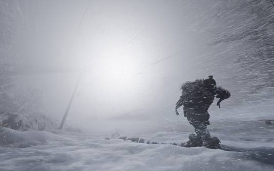 Студия Black Forest Games представляет Fade to Silence!